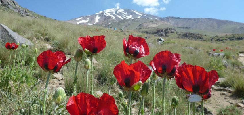 Najwyższy wulkan Azji – Damawand podsumowanie wyprawy