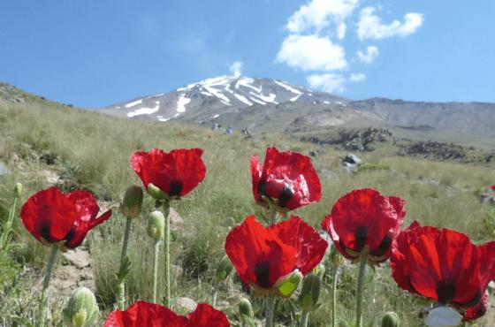 Wulkan Damavand – Trzy praktyczne wskazówki