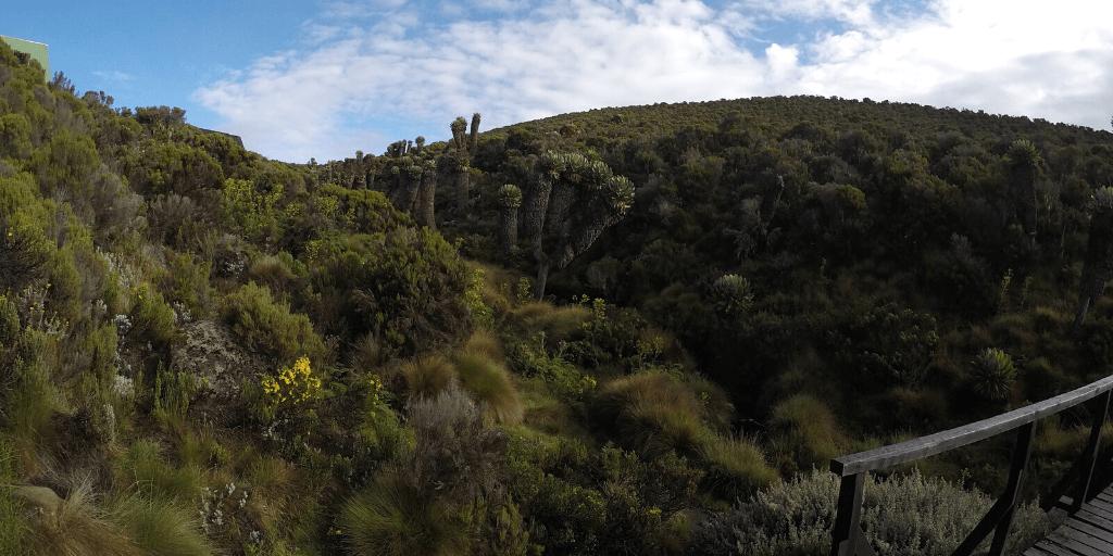 Kilimanjaro – Podsumowanie wyprawy 2
