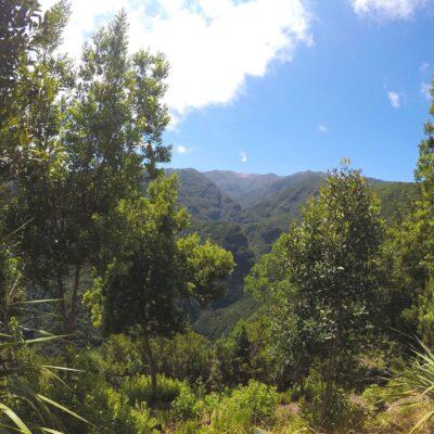 La Palma/Wyspy Kanaryjskie 2021