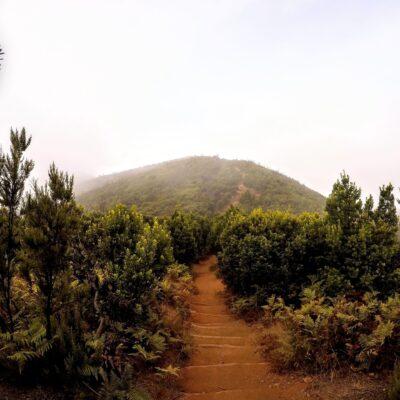 La Gomera/Wyspy Kanaryjskie 2021